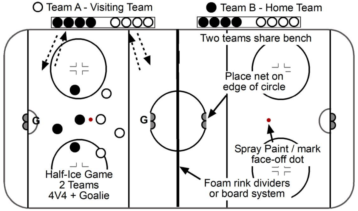 Two Team Model